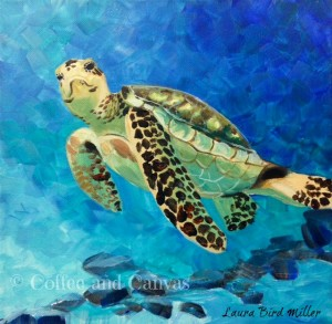 sea turtle copyright